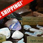 Wholesale Free Shipping